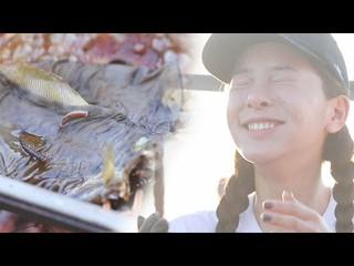 【動画】【公式sbe】 ソル・イナ 、ココナッツシーフード煮の味に「感動の涙」キム・ビョンマンのジャングルの法則3 16回20180525 公開。