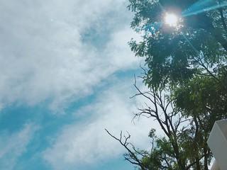【G公式】俳優イ・ジョンソク、近況公開。プールで肩露出の写真も。。☀️。