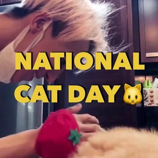 【g公式cos】 「猫の日」にちなんで、COSMOPOLITAN KOREAが猫好きな韓国スターを特集。BIGBANG G-DRAGON、WINNER MINO、ソルリ、Wanna