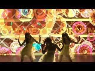 【動画】【公式】「日本AV出身のガールグループ」Honey Popcorn、韓国でのファンミーティングの様子が公開。TWICE原曲「WHAT IS LOVE?」