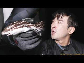 【公式sbe】  &quot&#59;鮫のように芽生え〜&quot&#59;イ・ミヌ 、知ってみると「本物のサメ狩り成功」キム・ビョンマンのジャングルの法則33 1回20180907