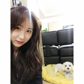 【g公式】IZONE イ・チェヨン、SNS更新。「すでに(秋夕)連休最終日ですね」。愛犬と久々の再会を果たした様子。