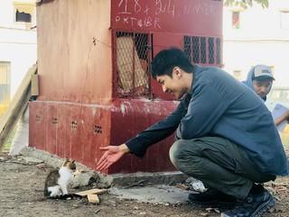 【G公式】俳優イ・スンギ、「バガボンド」撮影の休憩中に会ったかわいい猫との写真を公開。