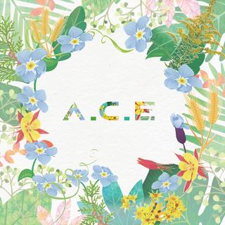 【動画】【w公式】 A.C.E、VLIVE公開。