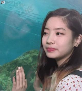 【動画】ダヒョン(TWICE)、水族館に弱い。。