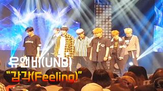 、、【w公式】 UnicornTV、[直カム] UNB -「Feeling」実況映像を公開。