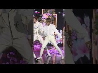 【公式sbp】Wanna One、「Spring Breeze」パク・ウジン Focus [THE SHOW]