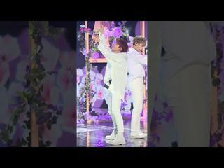 【公式sbp】Wanna One、「Spring Breeze」キム・ジェファン Focus [THE SHOW]