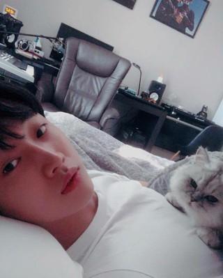 【G公式】B1A4 ジニョン、SNS更新。お腹の上には猫。