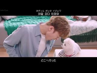 【動画】【日字】【JP】 10cm  -  pet