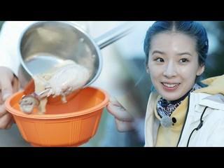 【動画】SHIHO、チュ・サラン、モンゴルで作る20人前の「サムゲタン」。