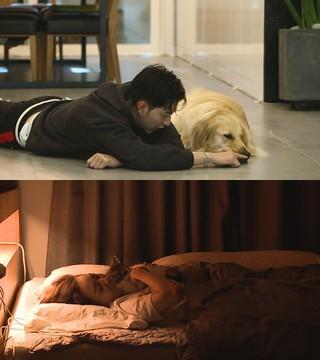 CNBLUE イ・ジョンシン 女優イ・ソヨン、tvNバラエティ「対話が必要なペット」でペットとの日常を公開。
