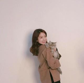 女優パク・シネ、飼い猫と一緒に登場「母親のポーズ」を見せる。