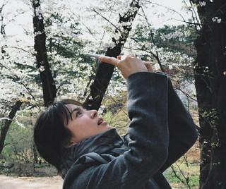 桜よりも視線が奪われるのは女神のようなソン・ヘギョ♡桜を写す横顔にドキッ!