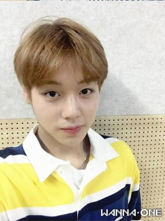 「WannaOne」メンバーのセルカ(自撮り)が可愛いーーー! | コリ ...