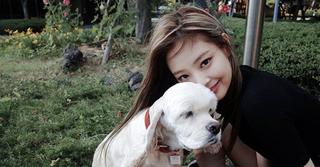 「BLACKPINK」ジェニーが公開した愛犬の姿が超可愛い♡