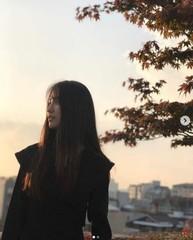 パク・ハソン、秋の雰囲気漂う美しい近況公開!