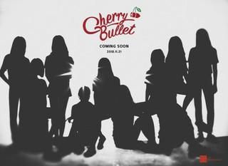 「AOA」以来6年ぶり!「FNCエンタ」から新人ガールズグループ「Cherry Bullet」が誕生!